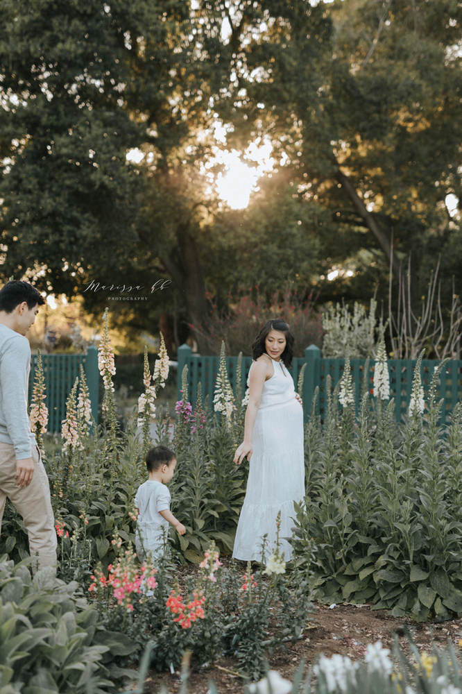 Palo Alto Maternity Photographer